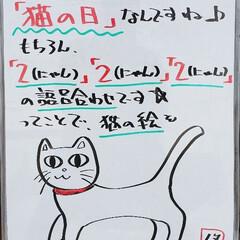 猫の日/A型看板/ホワイトボード/ひらた家具店/猫 おはようございます! 本日のホワイトボー…