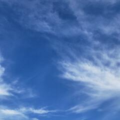 雲/空/標茶/道東/ひらた家具店/令和元年フォト投稿キャンペーン/... 本日は天気が良くて気持ちがいいです。 ち…