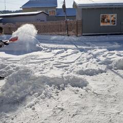 標茶/冬/雪かき/雪/ひらた家具店 こちらは今朝の標茶(しべちゃ)町。 ひら…
