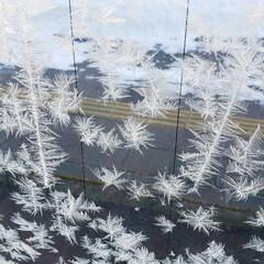 標茶/北海道/しばれる/凍る/窓/ひらた家具店/... 今朝のひらた家具店のウィンドウ。 マイナ…