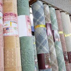 ひらた家具店/平田家具店/インテリア/カーペット/じゅうたん/絨毯/... カーペットって色んな色、柄がありますよね…