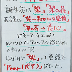 花言葉/誕生花/今日は何の日/看板/A型看板/ホワイトボード/... おはようございます! 本日のホワイトボー…
