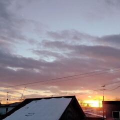 寝正月/標茶/正月/太陽/空/夕日/... 元日なのでご来光…と見せかけて、こちらは…