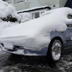 車/吹雪/冬/雪/ひらた家具店/風景 これは一昨日の吹雪の時の我が家の車。  …