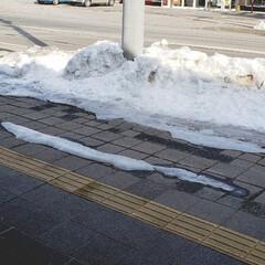 雪/季節感/小さい春/春/景色/ひらた家具店/... ひらた家具店の正面入り口前の道路。 写真…