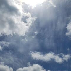 標茶/晴れ/雲/空/景色/ひらた家具店/... ここ数日の強風と雨から一転、ここ道東の標…
