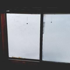 冬/標茶/寒い/窓/ひらた家具店 今朝のひらた家具店の2階の窓。  今日の…