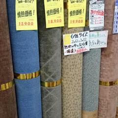 ひらた家具店/平田家具店/インテリア/カーペット/じゅうたん/ラグ/... カーペットを選んでいるお客さまとお話して…