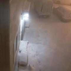 標茶/吹雪/雪/ひらた家具店/冬 雪が大したことなくて助かった、と言ってい…