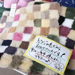 シートクッション/羊毛/ムートン/インテリア/ひらた家具店 ムートン(羊毛)のシートクッションが入荷…