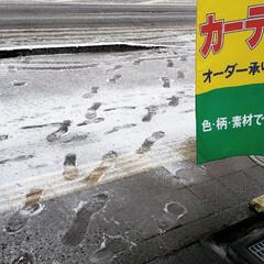 みぞれ/雪/標茶町/標茶/道東/北海道/... 今日は今シーズン初の積雪となりまして。 …