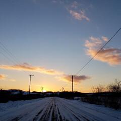 標茶/配達帰り/夕焼け/夕陽/夕日/雪/... 配達帰りに一枚。  ちょうど日が沈む時間…