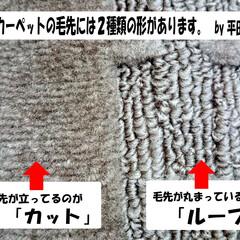 ひらた家具店/カーペット/じゅうたん/絨毯/毛先/パイル/... カーペット(じゅうたん)の毛先の形って2…
