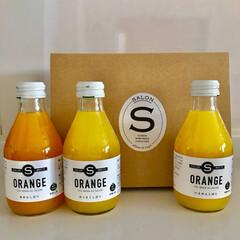 柑橘系/みかん/オレンジ/いただきもの オサレなオレンジジュースもらた♪ パッケ…