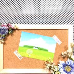 コルクボード/蜷川実花/葉祥明/ポストカード/リース/ハンドメイド/... キャンドゥでナチュラルなお花🌸を見つけた…(3枚目)