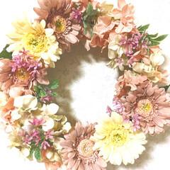 コルクボード/蜷川実花/葉祥明/ポストカード/リース/ハンドメイド/... キャンドゥでナチュラルなお花🌸を見つけた…