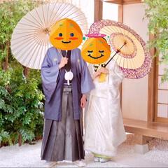 前撮り/息子夫婦/可愛いお嫁ちゃん/結婚 11月に入籍、年明けに🎎結婚式を執り行う…