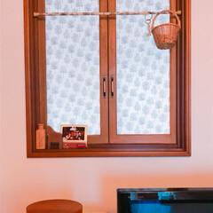 マスキングテープ/窓ガラス/ビフォーアフター/DIY/住まい 幕張メッセで買ってきたmtCASAで こ…(2枚目)