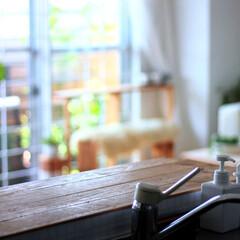 インテリア/無印良品/住まい/キッチン キッチンから おはようございます!久々に…(1枚目)