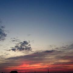 東の空/暮らし/イマソラ/空/秋/風景/... 【秋の一枚】目覚まし時計より 早く目が覚…