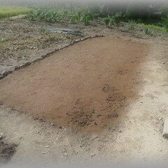 芝グリーン/芝庭/芝床/種/洋芝/散歩/... 義父が一生懸命作っていた畑 心臓の病気を…