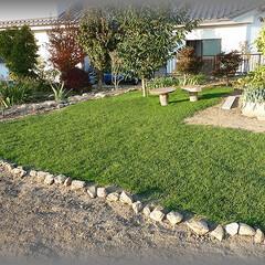 生/芝種/公園緑/緑化/芝庭/ガーデン/... 芝床土を三区画とも変えてみましたが、発芽…