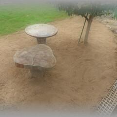 芝床土/元肥/グリーン/広場/散歩/BBQ/... 二区画目の芝床 一区画目と二区画目の芝床…
