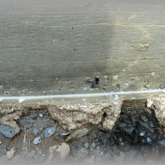 diy201604/基礎/コンクリート/穴/修正 基礎の最下部分に出来てしまった巣穴のアッ…