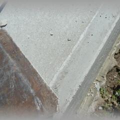 diy201604/バリ/削る/面取り/45°/コンクリート/... スクレーパーを使って基礎天端の面取り部の…