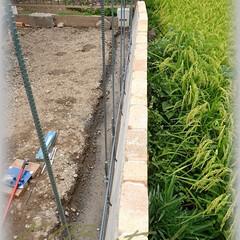 基礎コンクリート/鉄筋/ブロック塀/型枠/D10/D13 ブロックの配置に合わせ鉄筋を配筋していき…