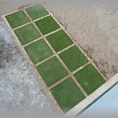 人工芝/レンガ/ベルギーレンガ 人工芝2区画目!  水平レベル出しが大変…