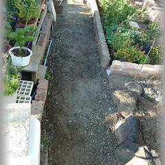 埋め戻し/排水管塩ビパイプ/引き廻し/下水/雨水 一番目の桝からの排水管を埋戻しました。 …