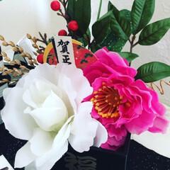 DIY/ハンドメイド/ダイソー/セリア/お正月準備/しめ縄/... 今年はお正月飾りを手作りしました(ᵔᴥᵔ)(2枚目)