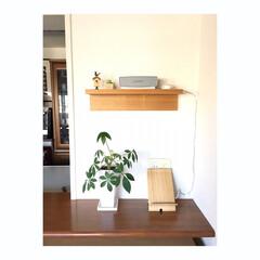 心地よい暮らし/マンション暮らし/すっきり暮らす/音楽のある暮らし/ブルートゥース対応スピーカー/bose キッチンカウンター奥のこの場所。 BOS…