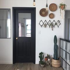 おうち/バスケット/アフリカンバスケット/植物のある暮らし/観葉植物/インドアグリーン/... 柱サボテンを我が家にお出迎えしました。 …