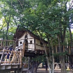 camp/アスレチック/アウトドア/ツリーハウス/軽井沢/北軽井沢スウィートグラス/... 北軽井沢スウィートグラスキャンプ場。 大…