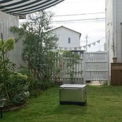 キャンプ用品/ガーデンフラッグ/日よけ/オーニング/ガーデニング/ガーデン/... 天気の良い日はキャンプ用品のメンテナンス…