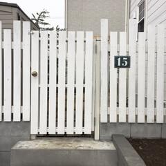真鍮/ドアノブ/ガーデン/お庭/扉DIY/DIY/... 旦那さんが作ってくれた外からお庭に続く扉…