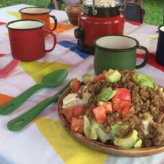 キャンプ飯/ホーロー/キャンプ雑貨/キャンプグッズ/キャンプ/グルメ/... 以前のキャンプ飯! 彩も鮮やかで簡単に作…