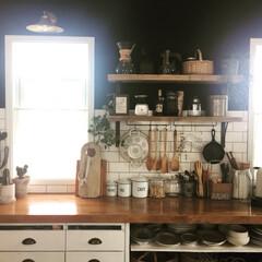 飾り棚/グリーン/インドアグリーン/サボテン/DIY/インテリア/... お気に入りのキッチン。 背面カウンターの…