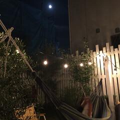 バーベキュー/生活の知恵/暮らしを楽しむ/ハンモック/お月見/お外ごはん/... 先日のお月見の日。 お庭でバーベキューを…
