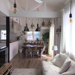 ダイニング/観葉植物/インドアグリーン/おうち/インテリア/雑貨/... ダイニングやキッチンにもグリーンを沢山飾…
