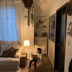 こどものいる暮らし/間接照明/インテリア/ハイランダー/折りたたみ椅子/キャンプグッズ/... 新しく購入したキャンプ用の椅子。 コット…
