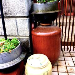 ガーデニング/ノスタルジック/骨董品/雑貨だいすき/アンティーク/レトロ 古いものにしか無い佇まいをお庭でも味わっ…