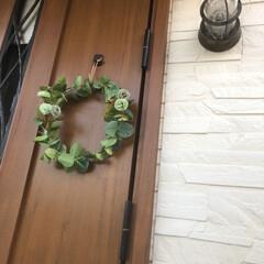 一年中/おしゃれ/シンプル/green/リース/造花/... 玄関ドアに クリスマスリース→しめ縄の後…(1枚目)