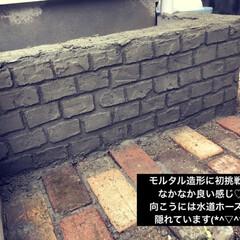 モルタル造形/庭/DIY/ガーデニング/インスタントセメント/ホームセンター/... お庭 DIY  モルタル造形に 初挑戦し…