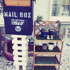 人工芝/芝生/鉢/オシャレ/お気に入り/玄関/... 前回投稿した棚に セリアで買った人工芝の…