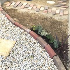 庭/DIY/レンガ/小道/勝手口/お花/... 勝手口から外のゴミ箱まで🗑 レンガの小道…
