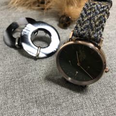 冬小物/腕時計/ファッション 最近ヘビロテ中の冬小物たち🥰  ハリスツ…