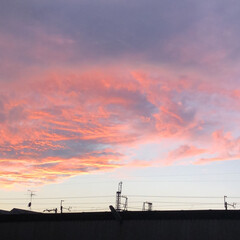 夕暮れの空/空/LIMIAおでかけ部/おでかけ/おでかけワンショット おでかけ帰りの空が、あまりにも綺麗て、思…